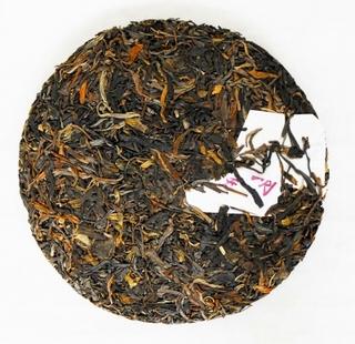 s-布朗丸茶5 2010.11.5撮影.jpg