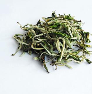 s雲南緑茶120303120323.jpg